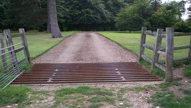 Cattle Grid on Kent Nature Walk