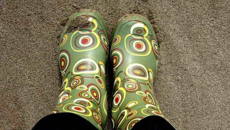 Jelly Wellies Fundraiser